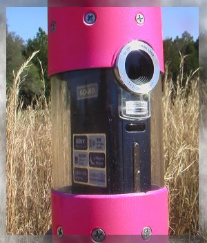 Aiptek high-definition camcorder in Sugar Rush